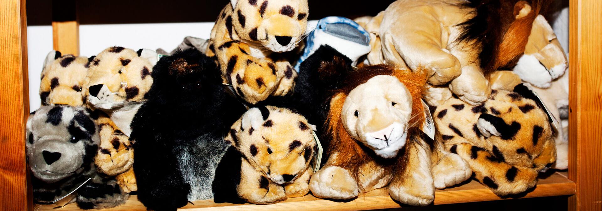 Bamser på hylder i Børnetræet for børn på krisecenter
