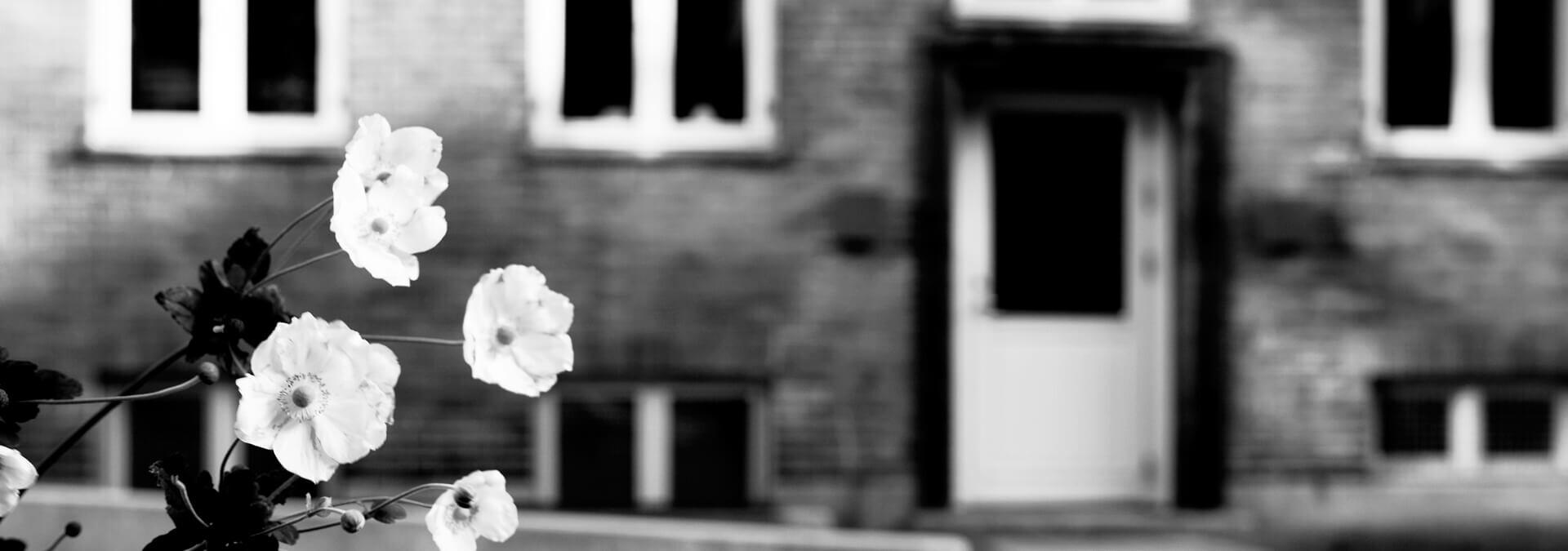 Bagindgang til Kvindehjemmet med blomst i forgrunden